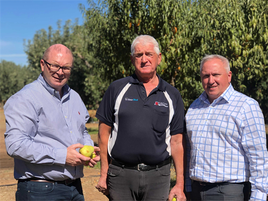 L-R Mark Field (Head of Coles Brand) John Poulos (grower) Robert Giles (SPC General Manager – Sales Marketing & Innovation).jpg