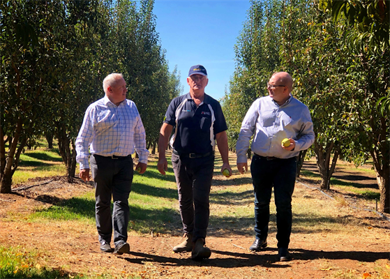 L-R Robert Giles (SPC General Manager – Sales Marketing & Innovation) John Poulos (grower) Mark Field (Head of Coles Brand).jpg