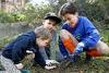 National Tree Day - photo courtesy of City of Sydney.jpg