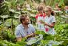 Curtis Stone with Esther and Solee picking vegetable in the garden.jpg
