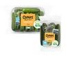Qukes Pack shots.jpg